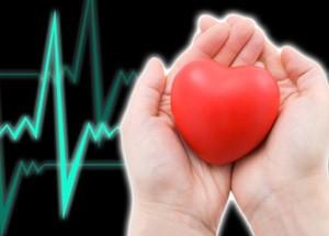 Употребление яблок защищает от инфарктов и инсультов